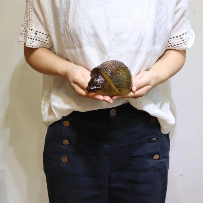 コスタ/COSTA ハリネズミ